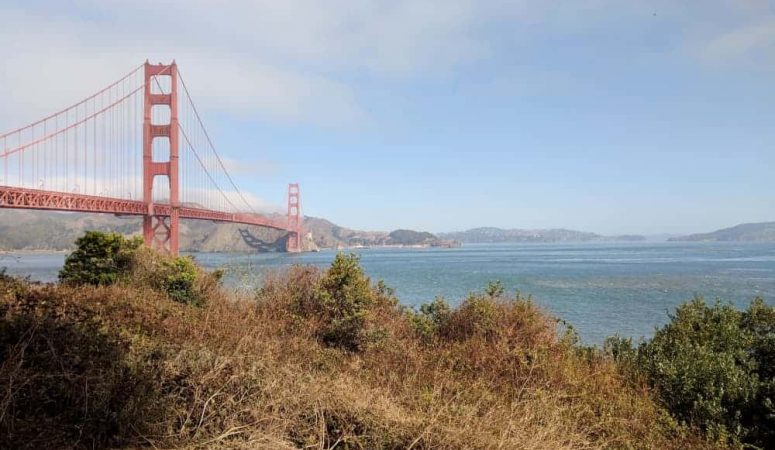 24 Hours in San Francisco: a Family Itinerary